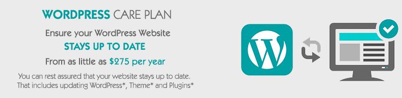 Wordpress Care Plan