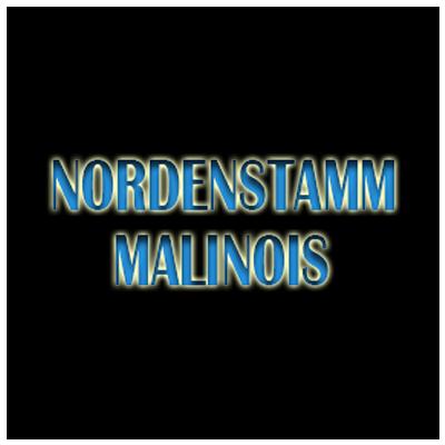 Nordenstamm Logo